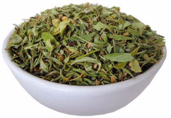 курильский чай побочные