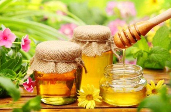 Польза майского меда – «Фрешмания»