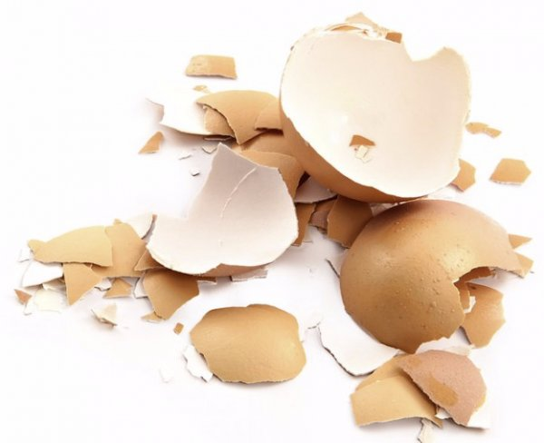 Как принимать яичную скорлупу для укрепления