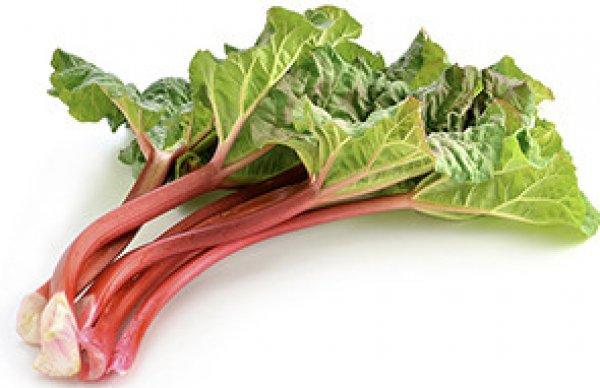 Витаминные черешки: обзор популярных сортов ревеня и рекомендации по его выращиванию