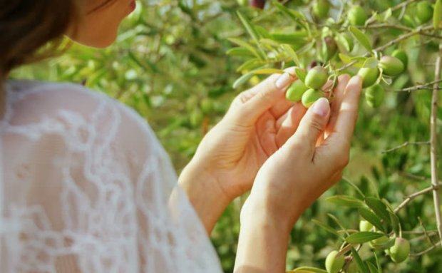 Оливки для женщин