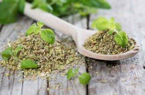 Можно ли зелень орегано употреблять в сыром виде