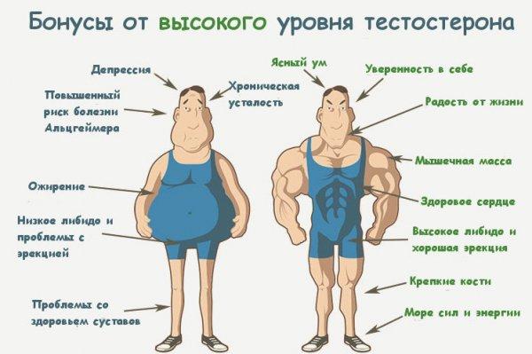 Пониженный тестостерон у мужчин. Причины, симптомы и лечение ...