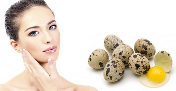 Варёные яйца (куриные, перепелиные): калорийность, польза ...