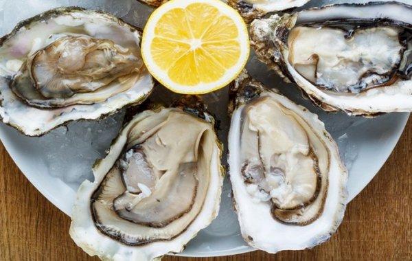 Устрицы: польза и вред для организма мужчин и женщин, как едят