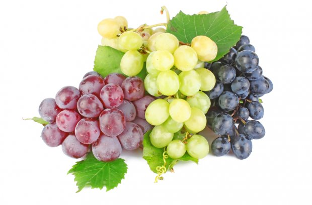 Три вида винограда