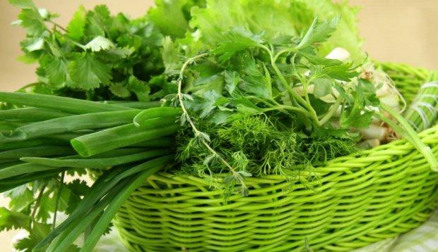 Зелень петрушки и сельдерея