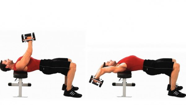 Упражнения с гантелями для увеличения грудных мышц для женщин