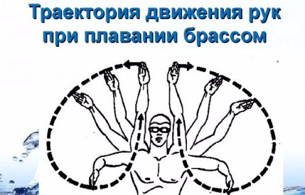 Траектория движения рук
