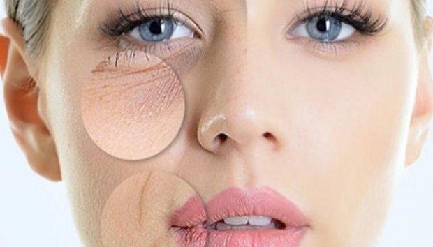 Коллаген сохраняет упругость кожи