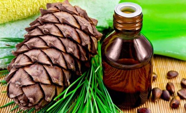 Картинки по запросу кедр в парфюмерной промышленности картинки