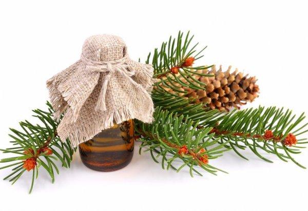 Пихтовое масло – универсальный лекарь. Пихтовое масло