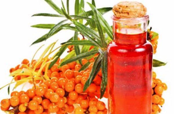 Облепиховое масло лечебные свойства и применение в домашних условиях